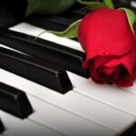 Пианино и роза