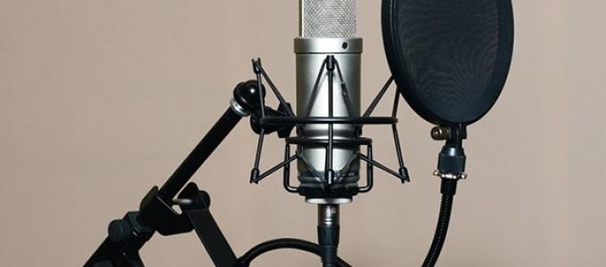 Микрофон с поп фильтром