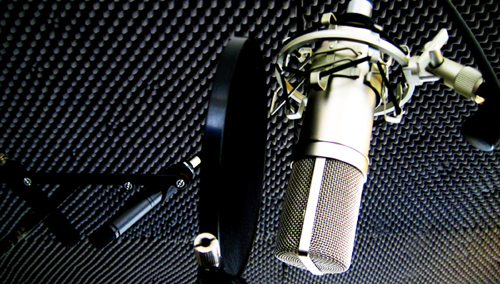 Запись аудиороликов