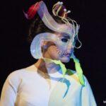 Певица Бьорк откроет выставку в Америке